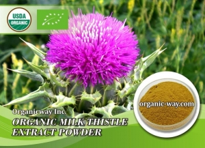 China Organic Milk Thistle Extract powder on sale
