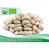 China Oranic White kidney beans on sale