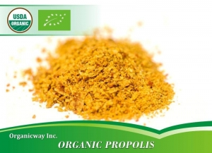 China Organic propolis on sale