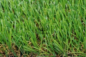 China Landscaping Grass WF-C13500-2 Decorative Artificial Grass on sale
