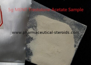 China Trestolone Acetate Injectable Anabolic Steroids Hormones MENT Acetate 6157-87-5 on sale