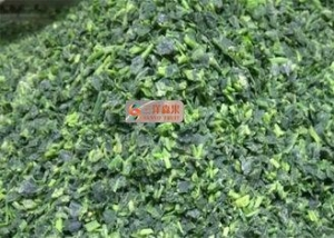China No Additive Healthy Freeze Dried Spinach Cuts For Instant Meal / Soup on sale