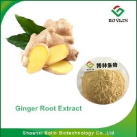 GingerRootExtract/Best Selling High Quality Ginger Root Extract with Free Sample