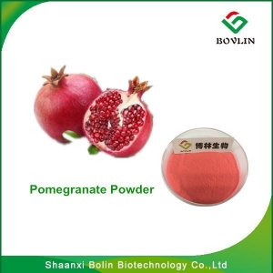 China PomegranatePowder /Hot Sale Pomegranate Extract 98.0% Ellagic Acid Anti-mutation Powder on sale