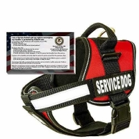"28"" Girth, Red - barkOutfitters Dog Vest Harness with 50 ADA Cards Kit, 22"""
