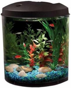 China API Aquaview 180 Aquarium Kit with LED Lighting and Internal Filter, 3-1/2-Gallon on sale