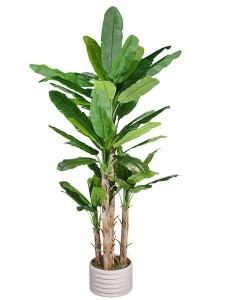 China Artificial Large Trees Large banana Y8328-65-5TS on sale