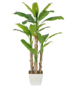China Artificial Large Trees Large banana Y8328-26-4TS on sale