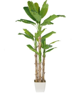 China Artificial Large Trees Large banana Y8328-32-4TS on sale