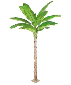 China Artificial Large Trees Extra large banana Y8463-15-1TS on sale