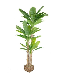 China Artificial Large Trees Big banana Y8328-54-3TS on sale