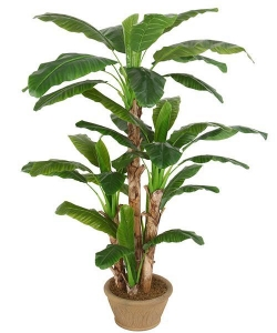 China Artificial Large Trees 2.1 m large banana Y8328-39-5TS on sale