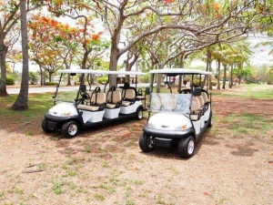 China Environmental Park 8 Person Golf Cart Sightseeing Bus With Led Front Lights on sale