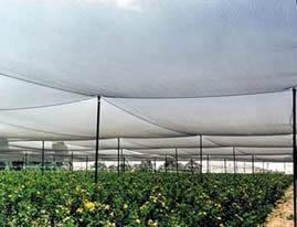 China Anti-Hail Net made of high-density polyethylene, resistance to stretching on sale