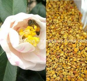 China Top Puer Tea Bee Pollen, King Pollen, Rare N Precious, No Antibiotics, No Pesticides, No Pathogenic on sale