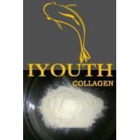 IYOUTH Golden Milkfish Collagen Peptide Ingredients