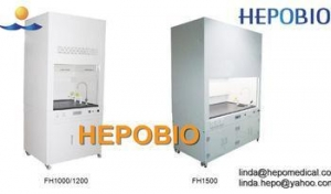 China laboratory Functional fume hood chemical testing fume cabinet on sale