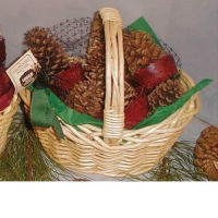 China Cone Starters In Willow Basket on sale