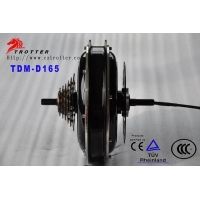 Electric self-balancing unicycle TDM-D165