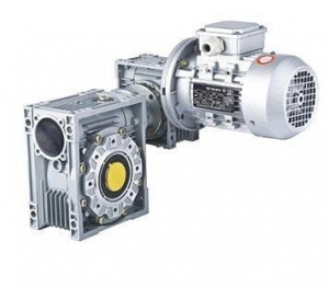 China AC Double Worm Gear Motor on sale