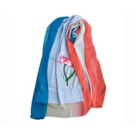 China Summer Silk Georgette Gradient Ramp Shawl and Red Neck Scarves with Embroidery on sale