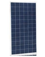 China Transparent Polycrystalline Solar Panel , 310 Watt Polycrystalline PV Module on sale