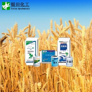 China 20% Chlorothalonil Fungicide on sale