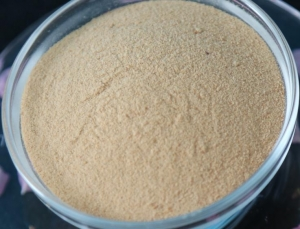China Food enzyme Neutral Protease on sale