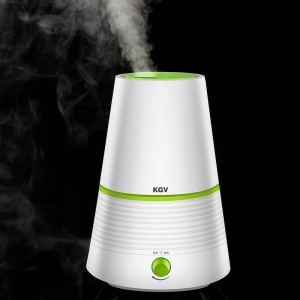 China Aroma Diffuser Humidifier ultrasonic with LED light Air Purifier on sale