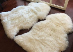 China Living Room Soft White Fur Floor Rug, Smooth Wool Sheepskin Car Seat Covers on sale