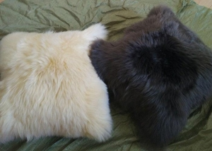 China Car Decorative Lambswool Seat Cushion Warm With Dyed Merino Sheared Wool on sale