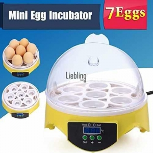China Corgy Digital Mini Hatching 7 Egg Incubator Chicken Duck Egg Incubator Egg Hatcher US Stock on sale