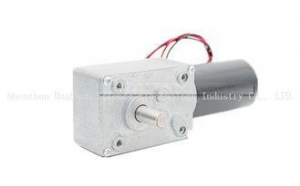 China High Torque Worm Gear Motor 24V , Low Noise Worm Drive Dc Motor Open Type on sale