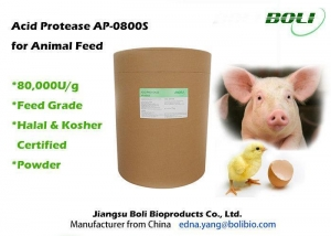 China Feed Grade Proteolytic Enzymes Acid Protease Powder 80000 U / g For Animal Feed on sale