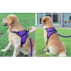 China Pet harness/leash SEL013 for sale
