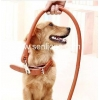 China Pet harness/leash SEL008 for sale