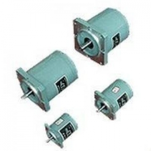 China TDY SouthAfrica series 110TDY115-2 permanent magnet low speed synchronous motor on sale