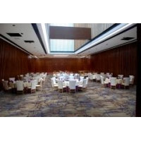 China Luxury Wholesale high quality Cut Pile Polypropylene Hotel Carpet on sale