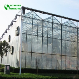 China professional glass greenhouse manufacturer on sale