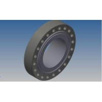 SteelPipeAccessories Easy Assembly Swivel-Ring Flanges Rtj Flanges Incoloy Flanges