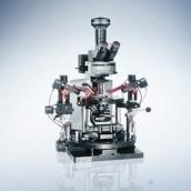 China Olympus BX51WI manual fixed stage microscope on sale