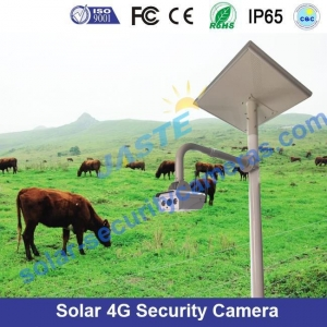 China Modular Solar 4G CCTV Surveillance Trailer on sale
