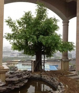 China Item name: China factory made artificial ficus tree for rooftop garden decoration on sale