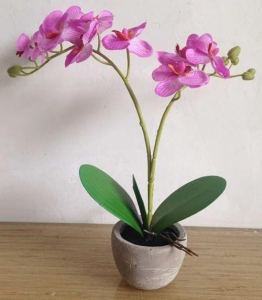 China ARTIFICIAL FLOWER Orchid in Cement Pot (P033426R-4) on sale