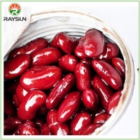 China Nutritious Tinned Red Kidney Beans 400g on sale