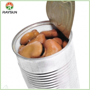 China Canned Fresh Salted Broad Beans 400g on sale