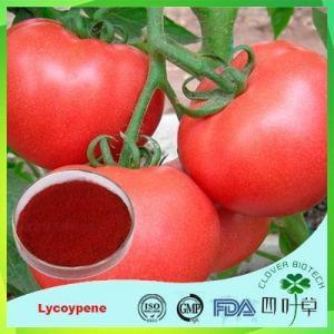 China Lycoypene on sale