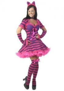 China Womens Plus Wonderland Cat Costume on sale