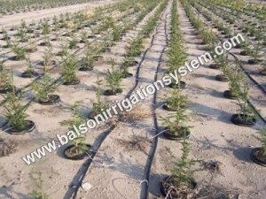 China Automatic Drip Irrigation System on sale