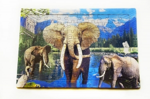 China lenticular 3d puzzle on sale